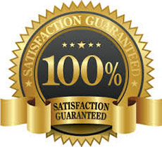 100-satisfaction